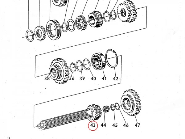 Nutenwelle komplett für Getriebe Zetor UR1 NEU