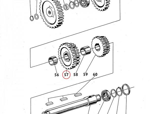 Getrieberad Zahnrad im Getriebe 4. und 3. Gang für Zetor UR1 NEU