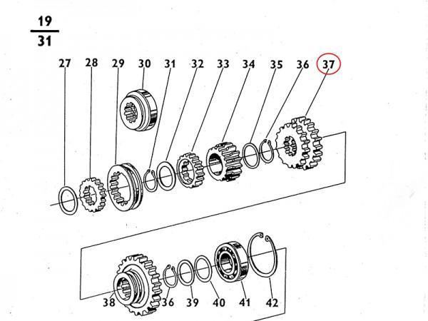 Schaltrad 2. & 3. Gang Getrieberad Getriebe für Zetor UR1 NEU
