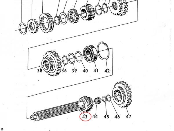 Nutenwelle im Getriebe Zetor UR1 NEU