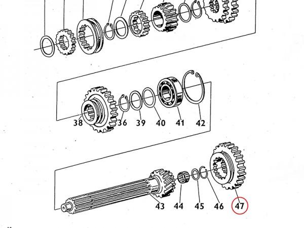 Schaltrad Zahnrad Reduktion für Getriebe Zetor UR1 NEU