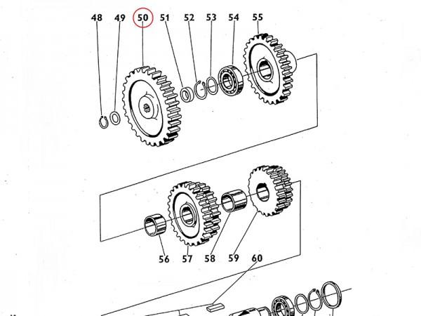 Antriebsrad Zahnrad für Getriebe Zetor UR1 NEU