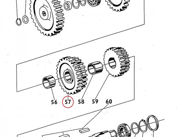 Zahnrad / Rad Gang IV und III im Getriebe Zetor UR1 NEU