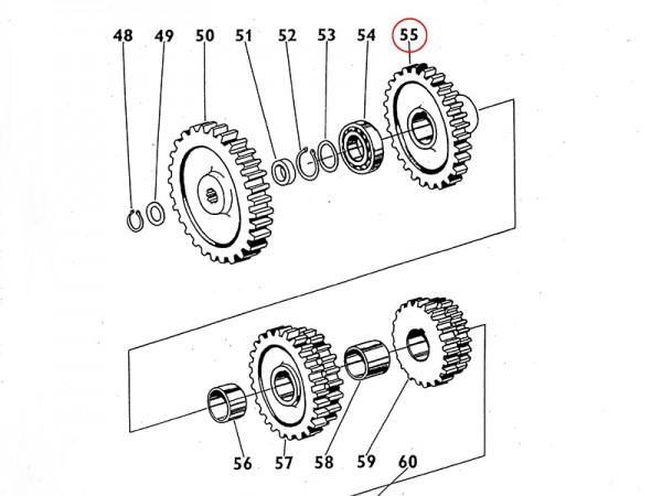 Zahnrad Dauereingriffsrad - Getriebe Zetor UR1 NEU