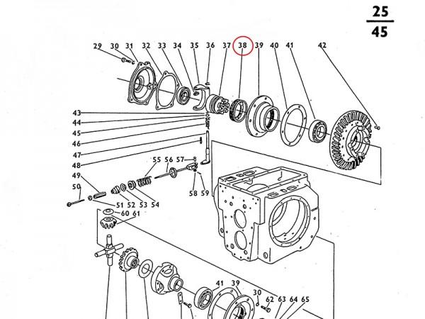Stellmutter für Getriebe / Ausgleichsgetriebe Zetor UR1 NEU